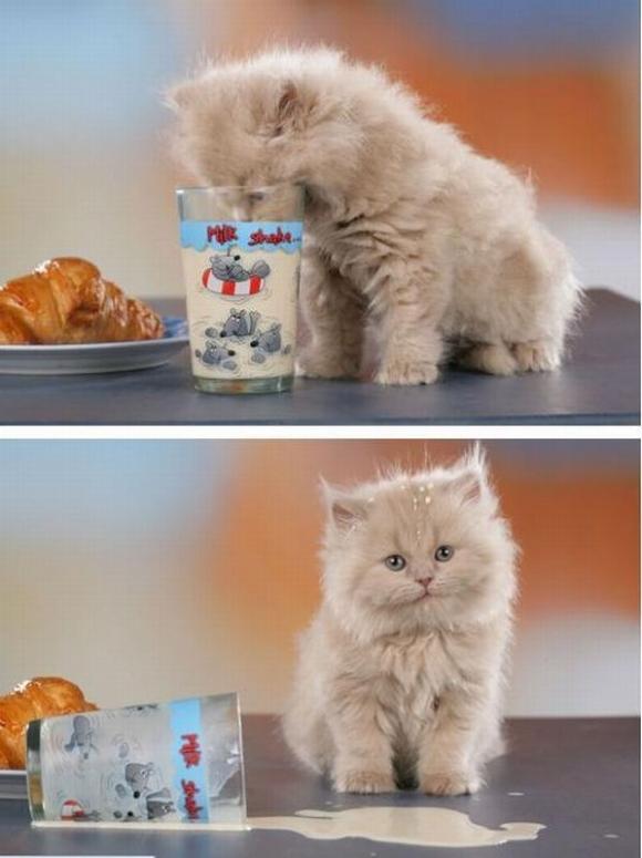 I don't cry over spilt milk