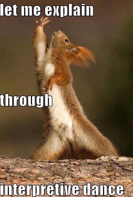 cute let me explain funny squirrel memes