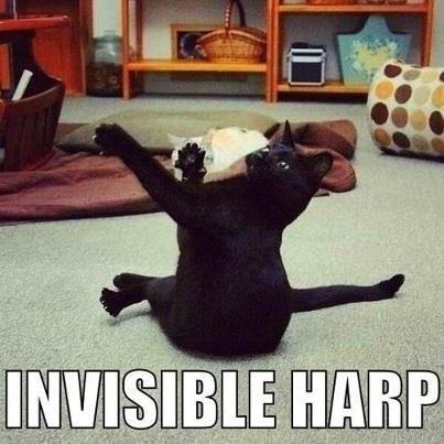invisibile harp