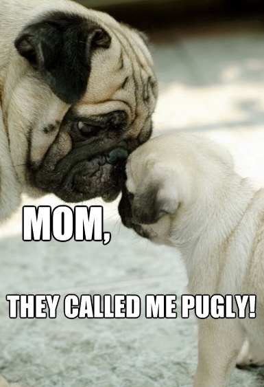 they called me pugly