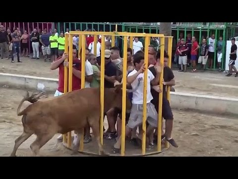 Most Dangerous People Fails in The Bull Fighting