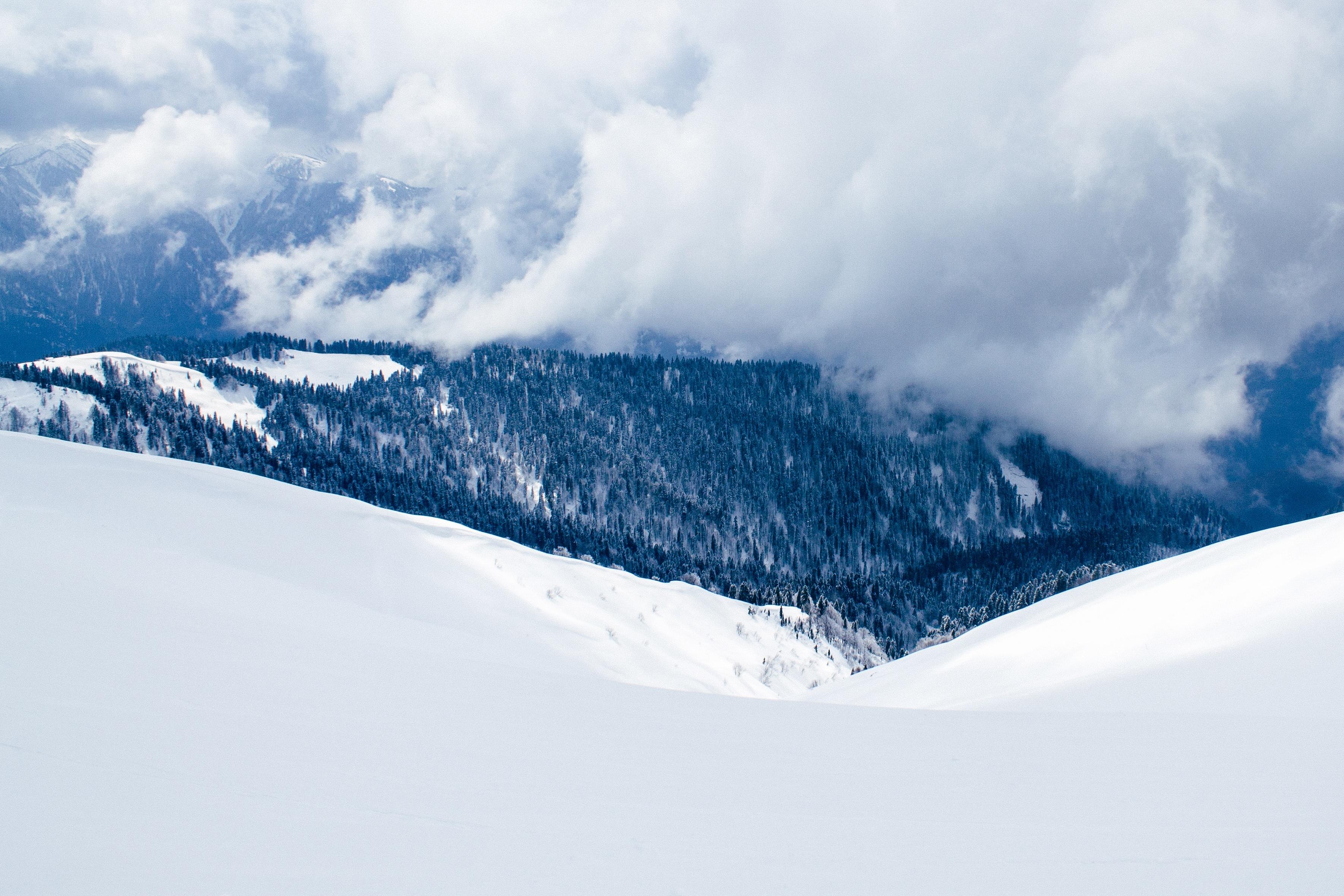снег ели гора snow ate mountain  № 2479278 без смс