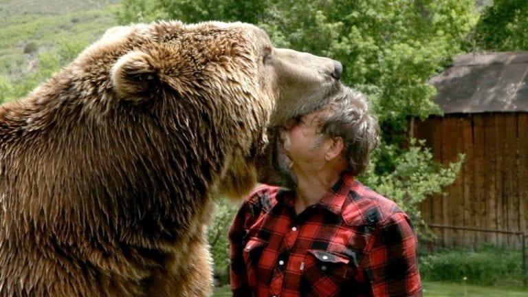 Grizzly Bear Vs Man