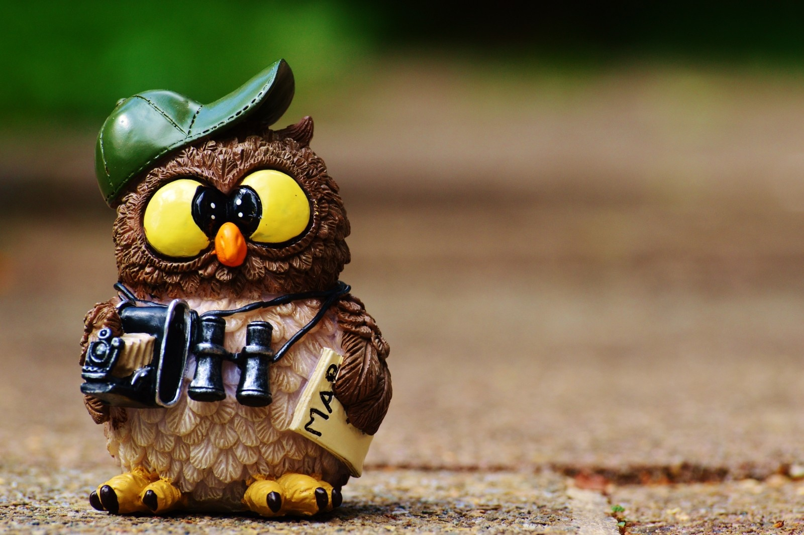 owl inspired craft around the world that is cute