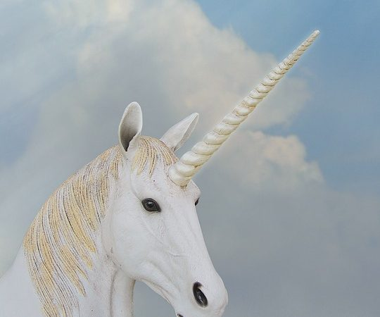10+ Pictures of Unicorns