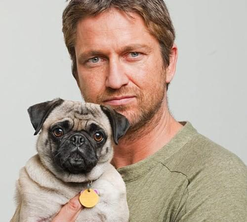 10 Celebrities With Their Cute Pugs