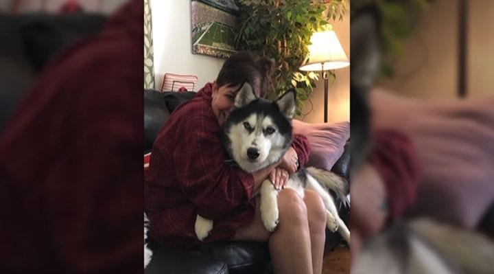 Husky Sniffs Out Owner's Disease 3 Different Times After Doctors Misdiagnosis