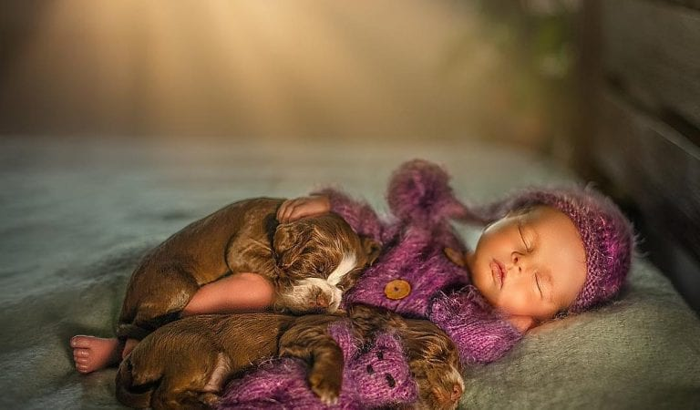 30+ Adorable Newborn Babies Sleeping With Baby Animals
