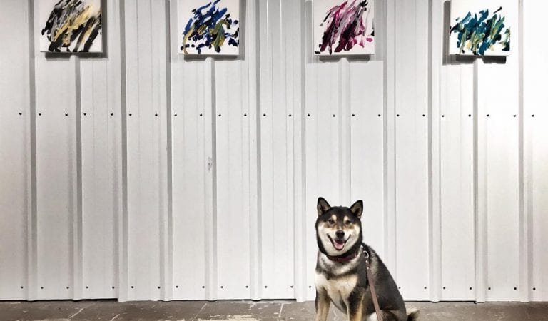 This Shiba Inu Hunter Becomes Professional Painter & The Painting Sells For $5000