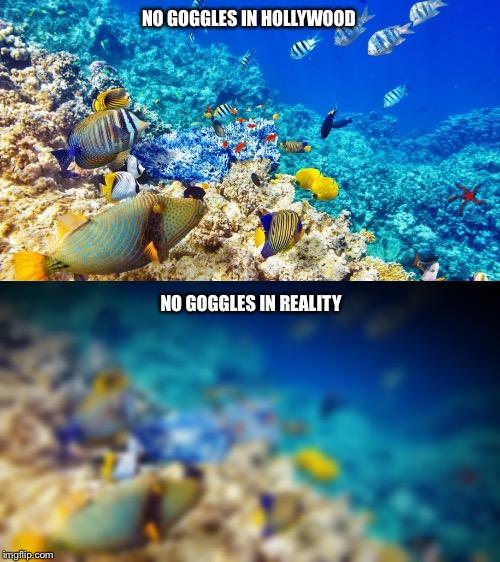 reddit expectation vs reality photos