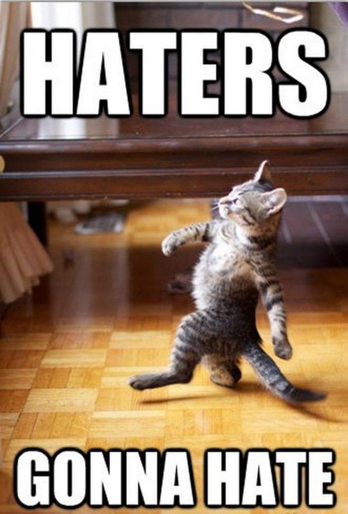 grumpy cat memes 32s