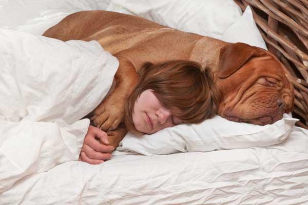 dog cuddling pics