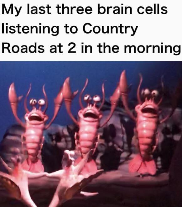 4th of july memes-4dgg