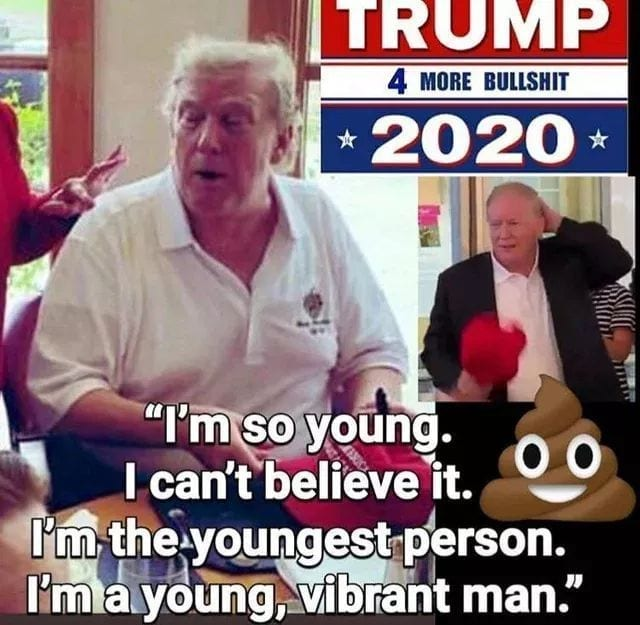 trump 2020 captions -13