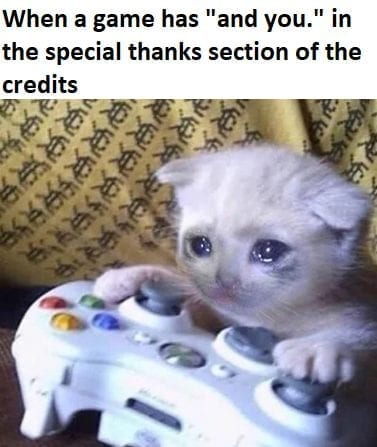 memes crying cat