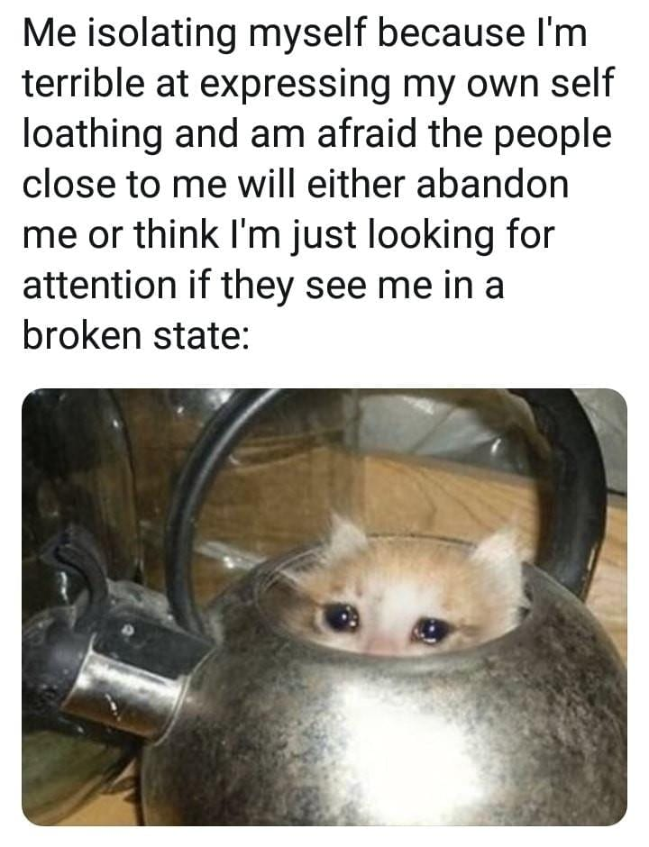Crying Cat Memes Is The New Craze Among Catizens - 30 ...