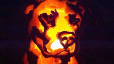 dog pumpkin carvings