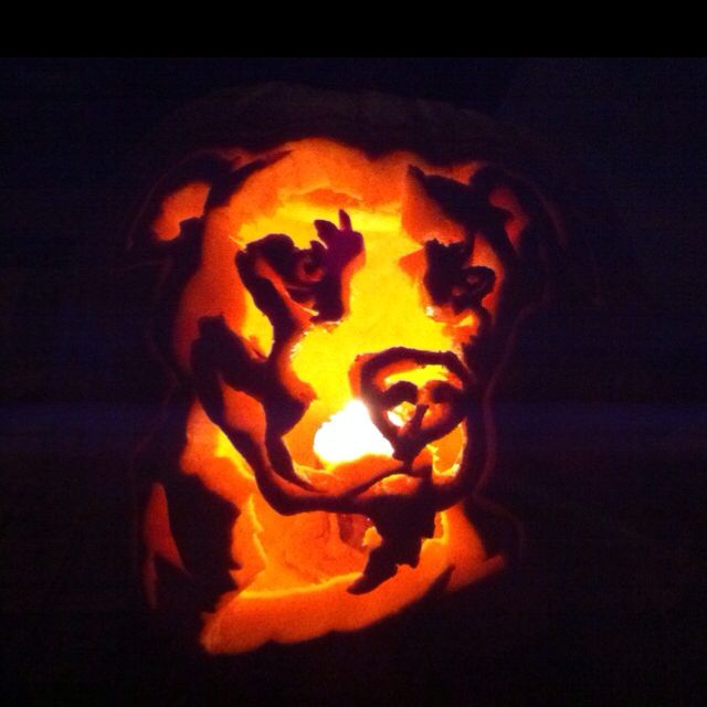 dog pumpkin carvings