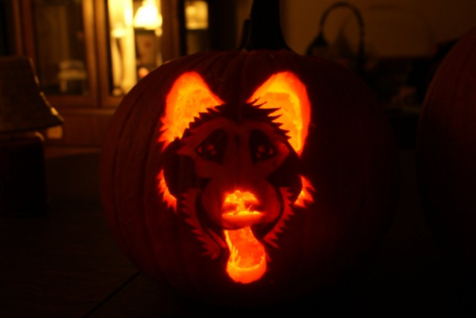 dog themed pumpkins -1juy43