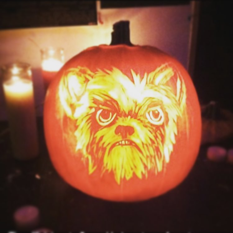 angry dog themed pumpkin carving