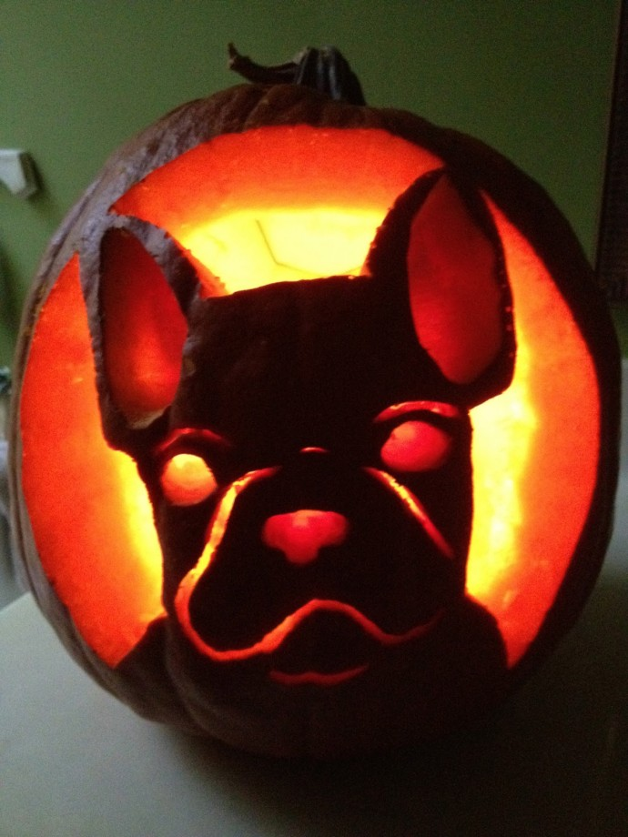 dog themed pumpkins -12