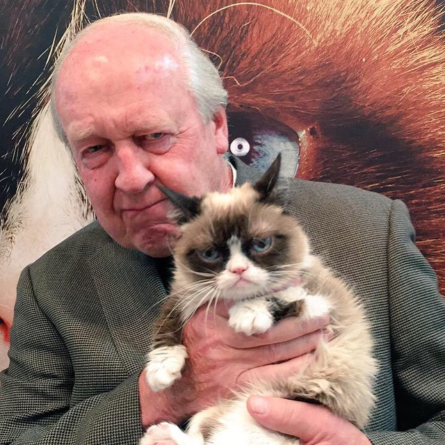 pop celeb pictures with real grumpy cat