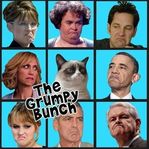 grumpy cat faces -2020-sf3h2