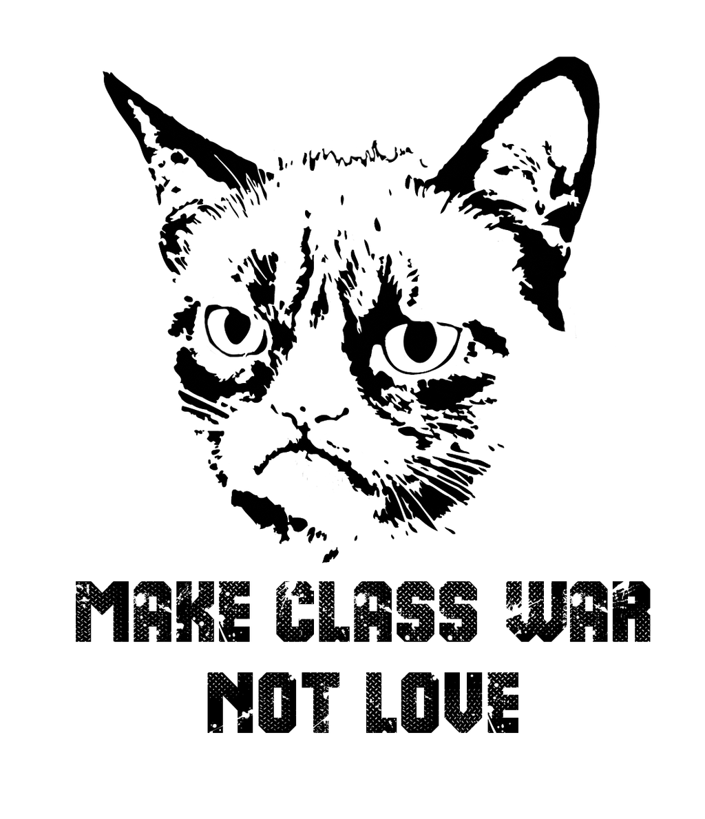 grumpy cat love memes