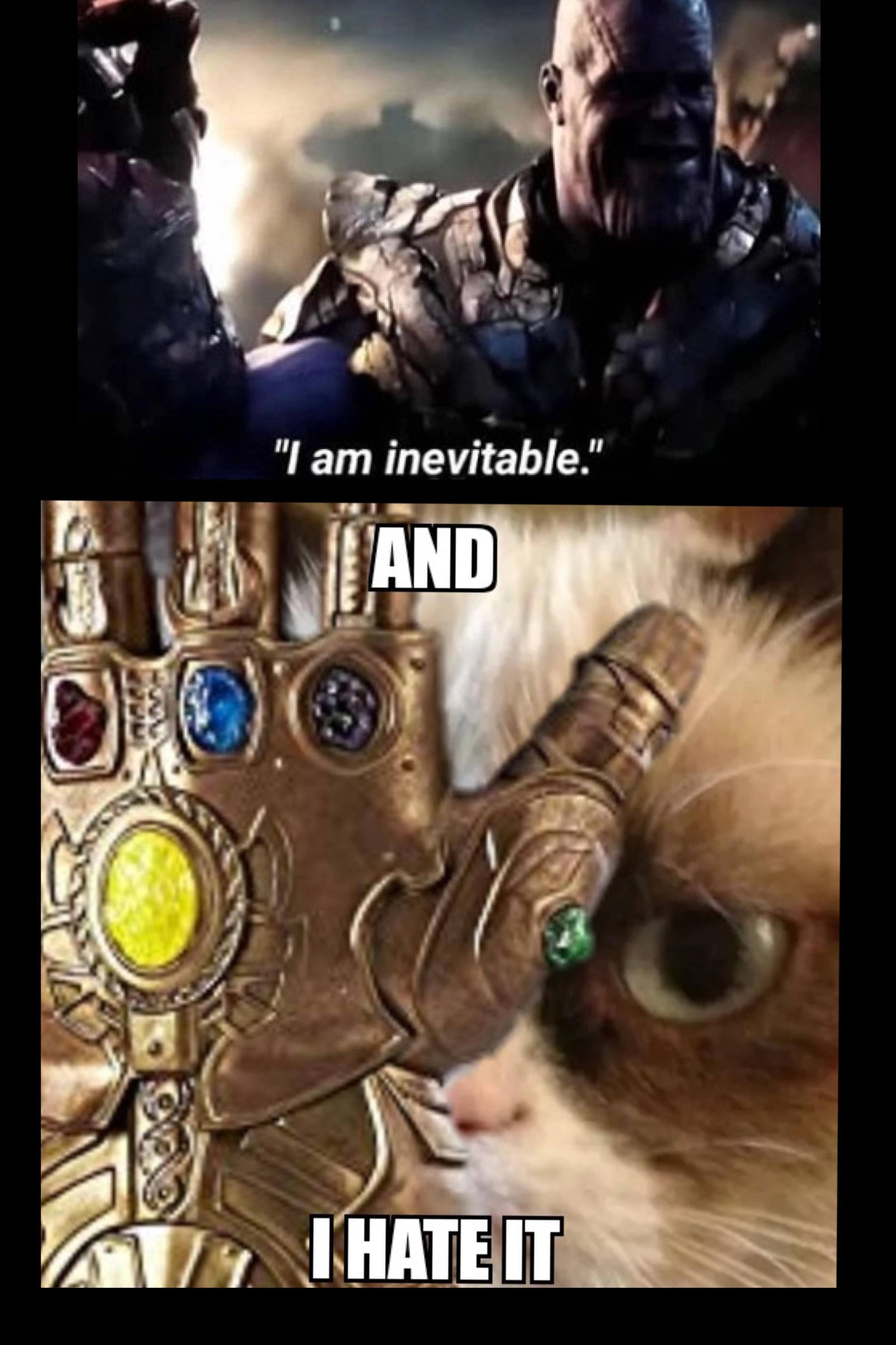 grumpy cat vs thanos