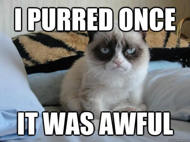 i purred once grumpy cat meme