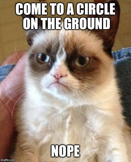 grumpy meme that went viral